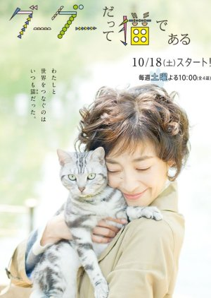 Gou Gou, the Cat (2014) poster