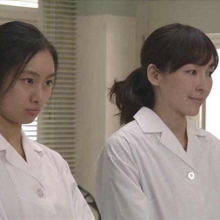 Nakuna, Hara-chan (2013) photo