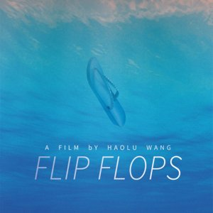 Flip Flops (2015) photo
