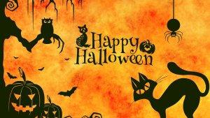 ASK MDL: Halloween