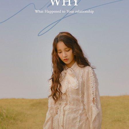 WHY (2018) photo