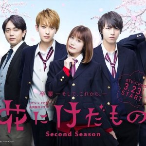Hana ni Keda Mono: Second Season (2019) photo