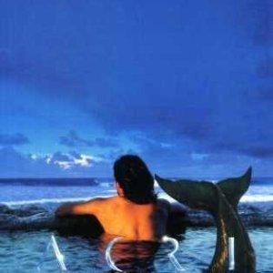 Acri - The Legend of Homo-Aquarellius (1996) photo