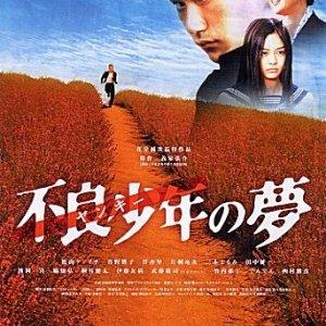 Yankee Bokou ni Kaeru (2003) photo