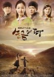 TV Novel: Gold Land
