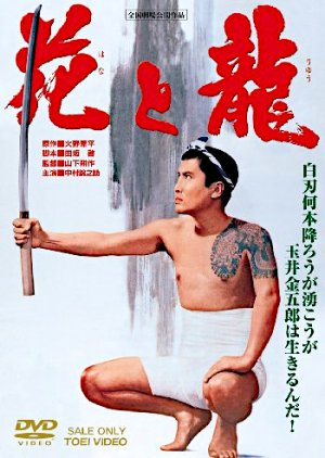 The Flower and the Dragon (1965) poster
