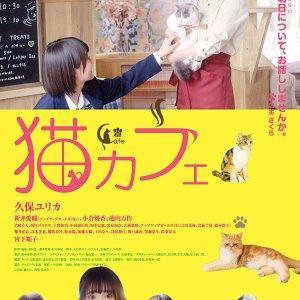 Neko Cafe (2018) photo