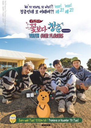 Youth Over Flowers : Australia