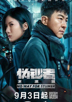 No Way For Stumer (2019) poster