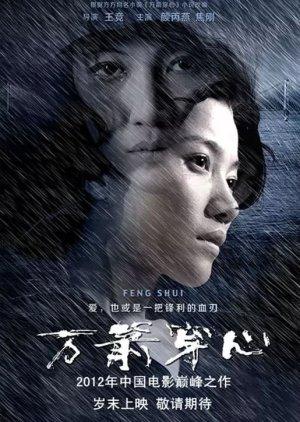Feng Shui (2012) poster