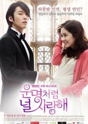 Fated to Love You (2014) poster