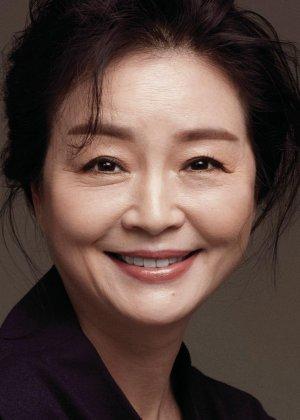 Won Mi Kyung in Happy Home Korean Drama (2016)