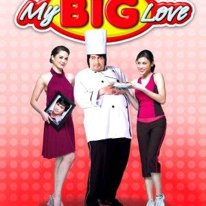 My Big Love (2008) photo