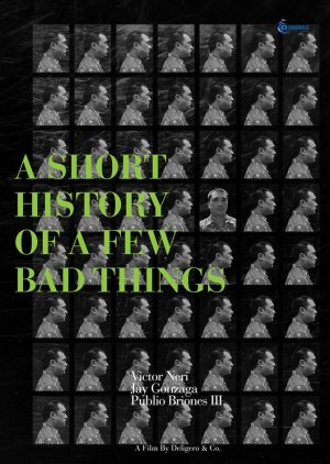 A Short History of a Few Bad Things