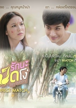 Ugly Duckling Series: Perfect Match Special (2015) poster