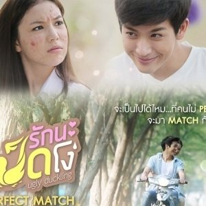 Ugly Duckling Series: Perfect Match Special (2015) photo