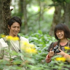 Heavenly Forest (2006) photo